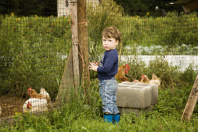 Young boy standing at a hen house