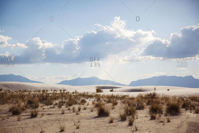 White Sands Desert in New Mexico