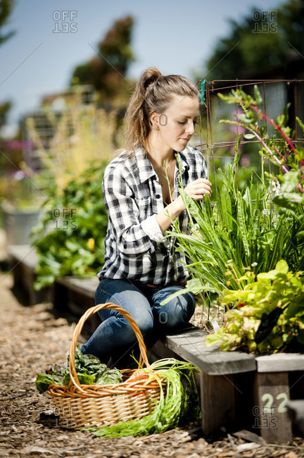 Woman taking care of garden