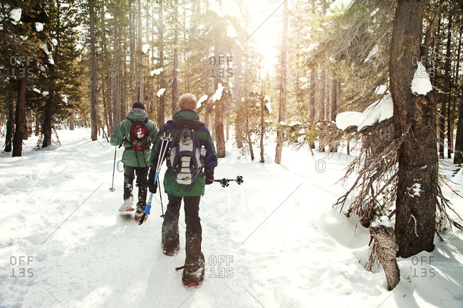 Two men snowshoeing in forest