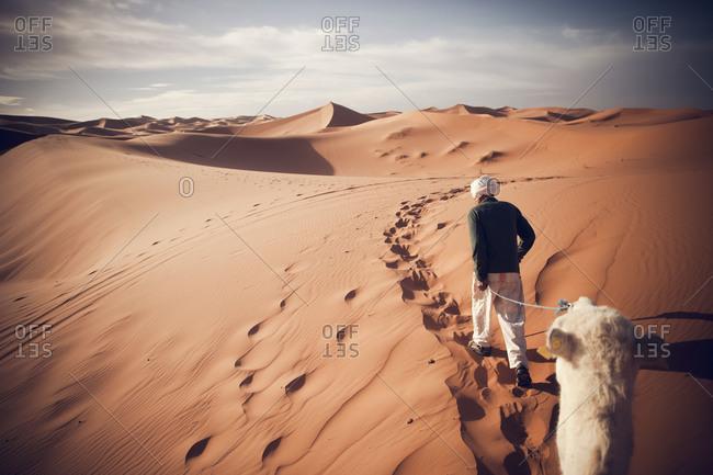 biome deserts