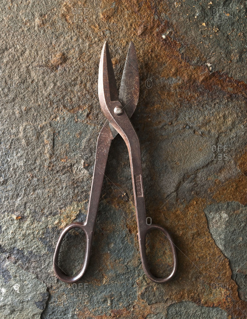 Rusted industrial shears