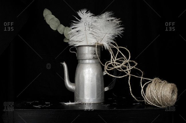 A vintage coffee pot and feathers
