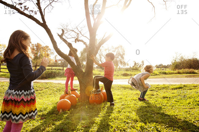 Child friends playing by tree with pumpkins