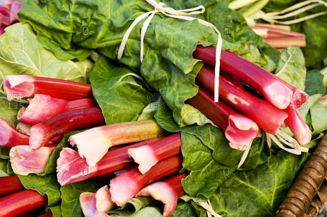 Fresh rhubarb stalks in basket