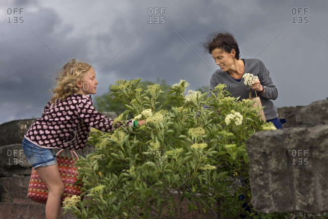 Mother and daughter picking flowers in stormy weather
