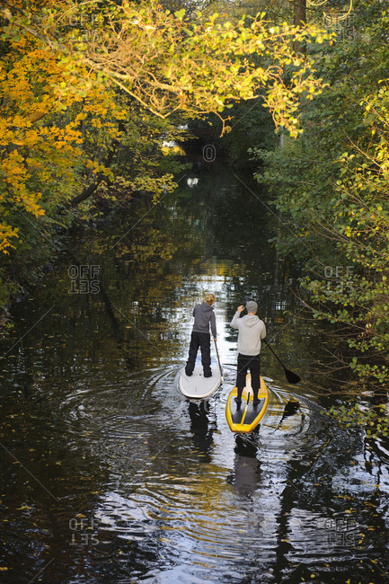 People paddle boarding on a river