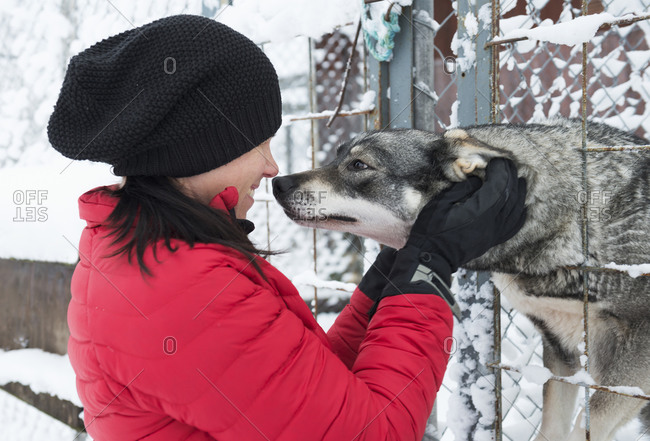 Young woman petting a hunting dog