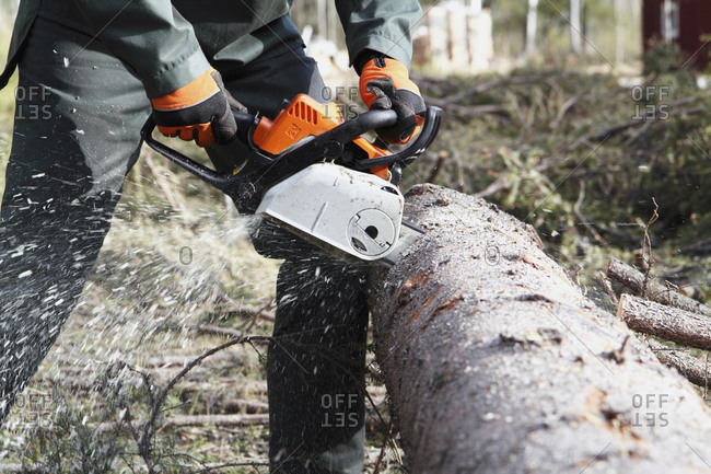 Man sawing a tree with a chainsaw