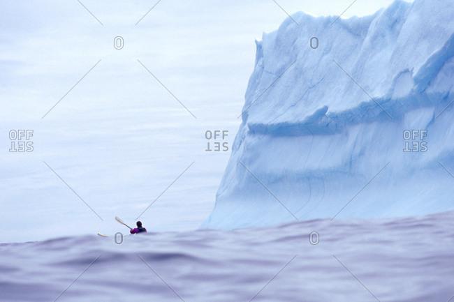 Kayaker near icebergs off Quirpon Island, Newfoundland