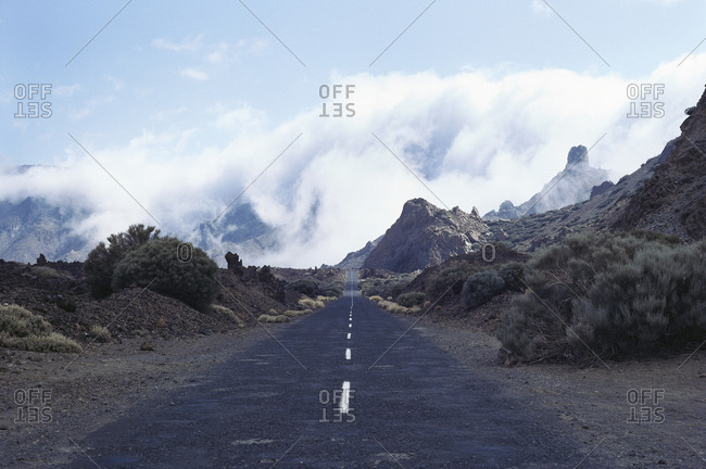 A road in the wilderness