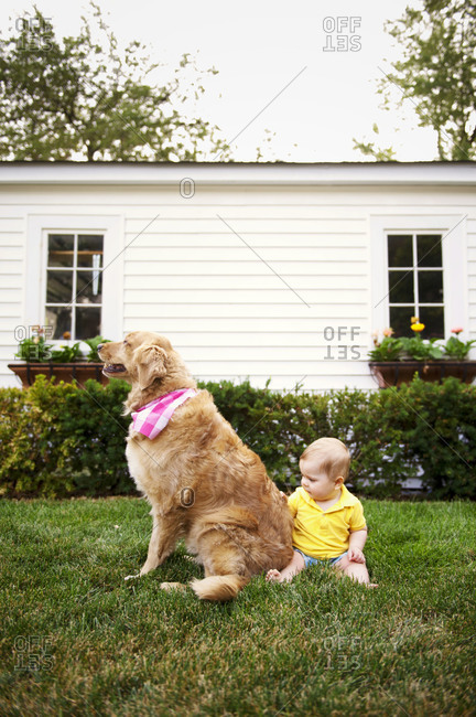 Baby with family dog in yard