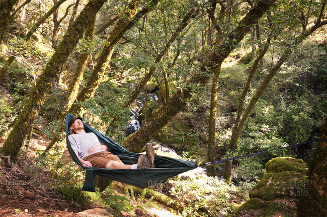 A man naps in a hammock in the woods