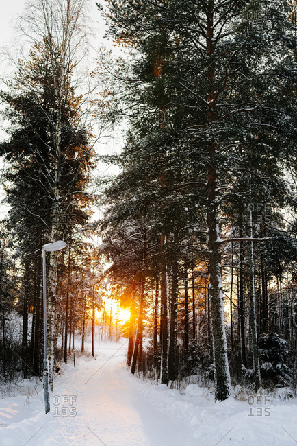 The sun setting over a snow trail in Sweden
