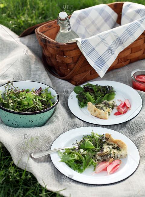 Outdoor picnic spread in central park