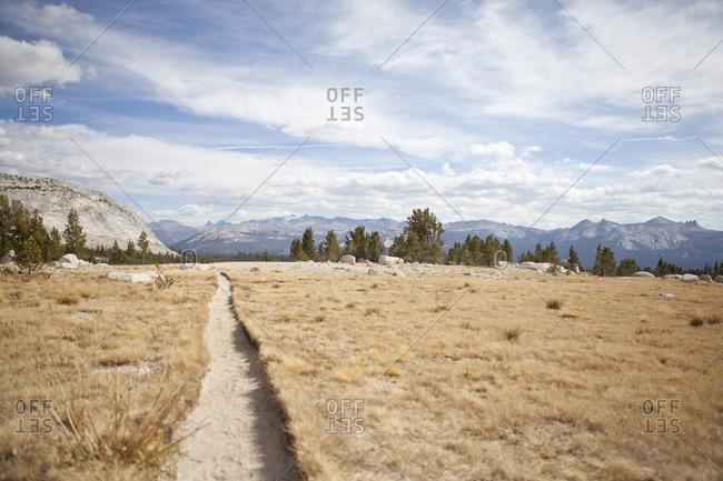 Sandy trail through the desert