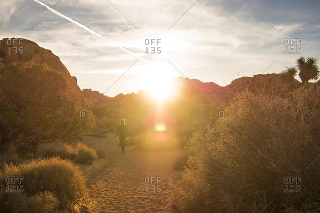 A woman walks through a desert at sunset
