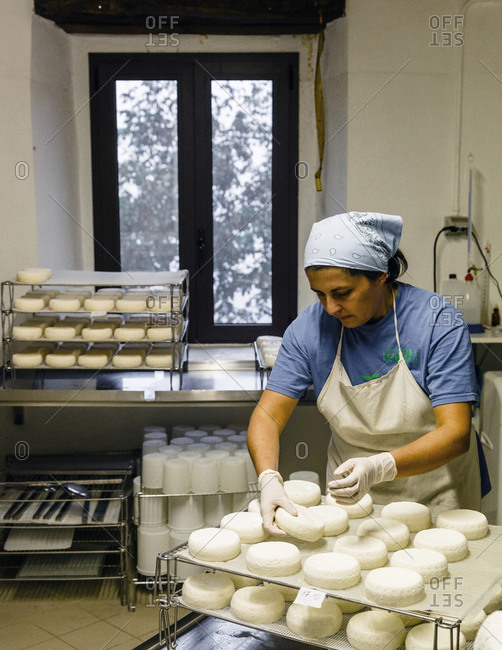 Piedmont, Italy - October 20, 2013: A woman makes goat cheese using slow food principles in Piedmont, Italy
