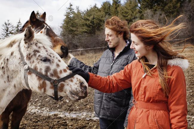 Couple petting horses
