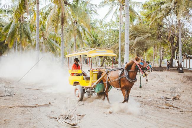 Gili Trawangan, Indonesia - September 6, 2014: Horse Carriagein Palm tree grove
