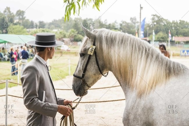 Man with horse waiting during equestrian show