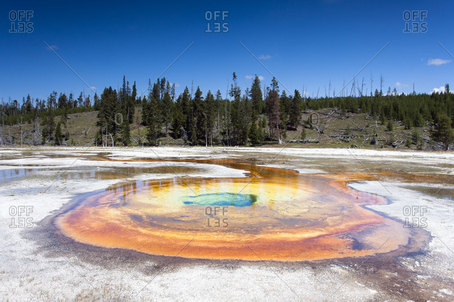 Yellowstone National Park, Chromatic Spring, Wyoming