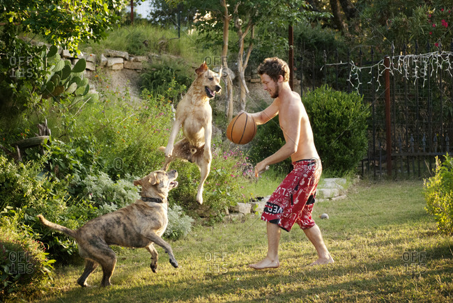 A man plays with his dogs