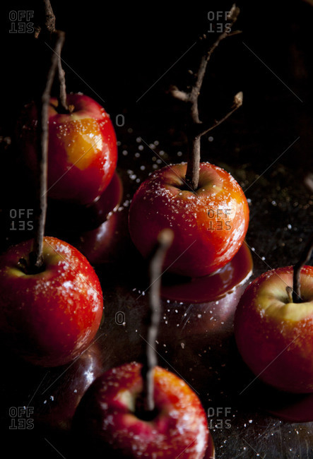 Caramel apples with twigs for sticks on a dark background