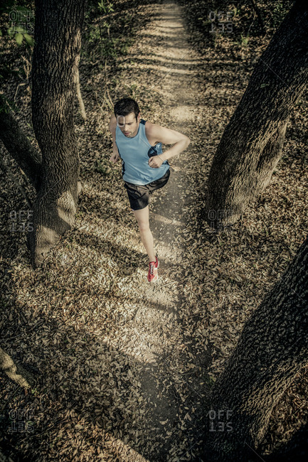 Overhead view of man running on a forest trail