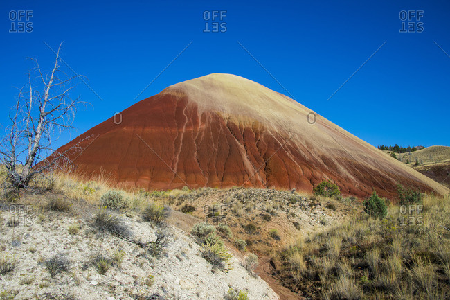 Multicolored strata hill in the Painted Hills unit in the John Day Fossil Beds National Monument, Oregon, United States of America, North America