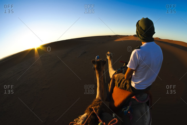 Man with camel caravan in Moroccan desert