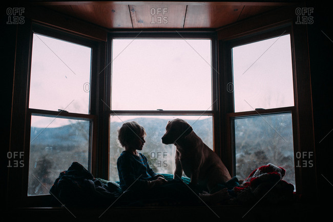 Boy And Dog Sitting In Bay Window Stock Photo Offset