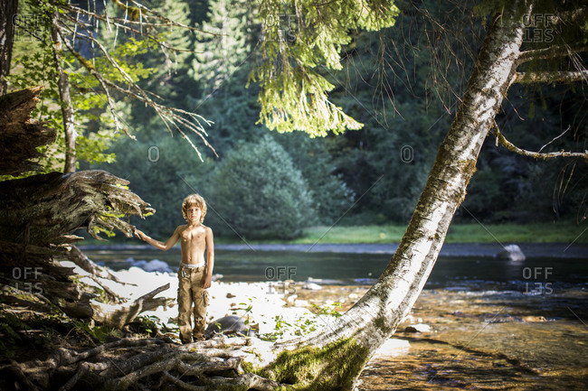 Young boy standing in a forest