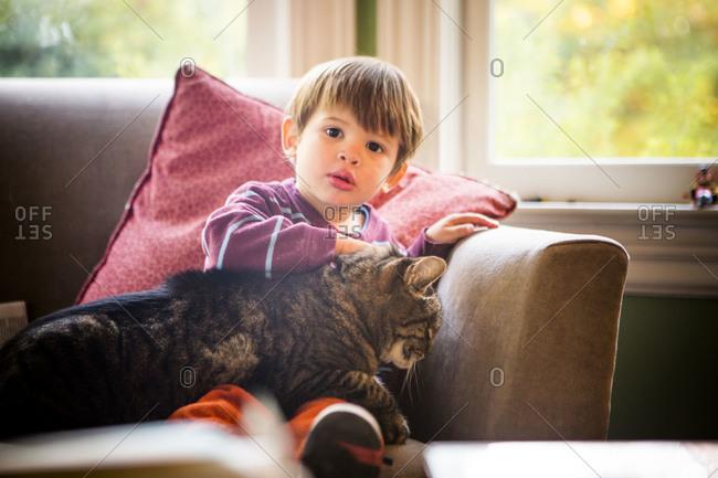 Boy petting a tabby cat