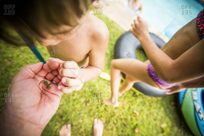 Children looking at a tiny lizard in their father's hand