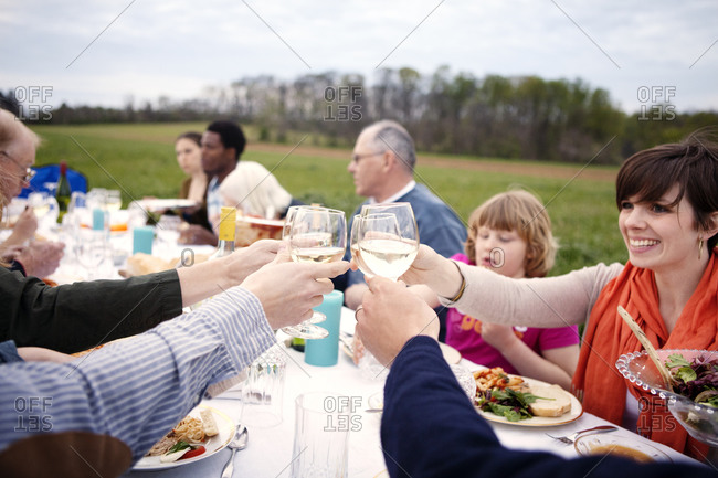 Family and friends having dinner in field
