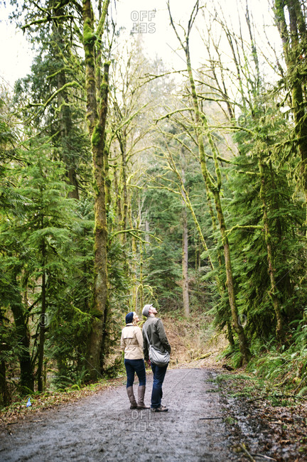 Couple looking up at mossy trees on forest trail