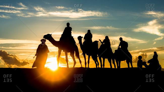 A dromedary caravan at sunset in Erg Chubby, Morocco