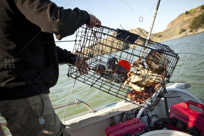 Crabber with a cage of crabs