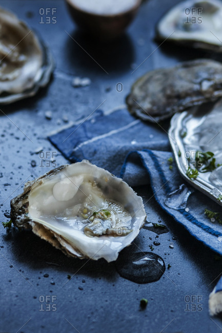 Atlantic oysters
