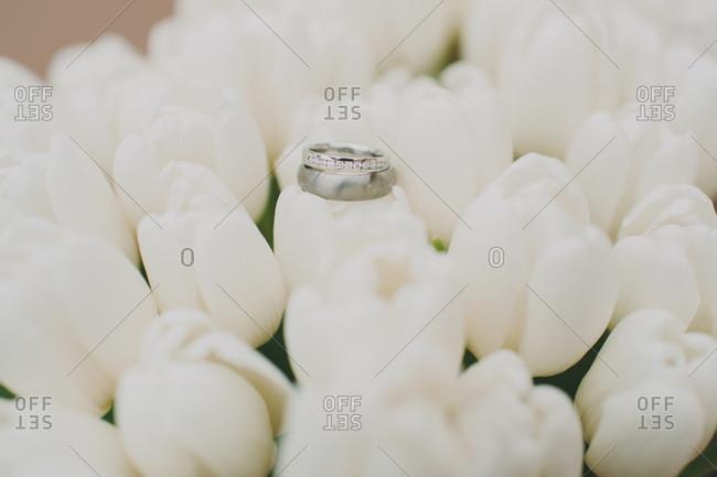 Wedding rings on tulips