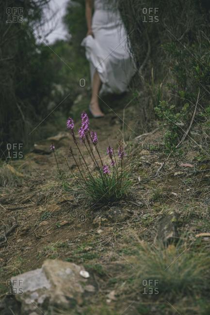 Bride walking down forest path