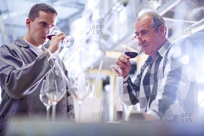 Wine makers testing wine blend