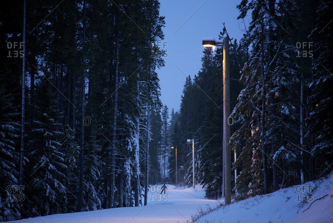 Cross country skiing and back country