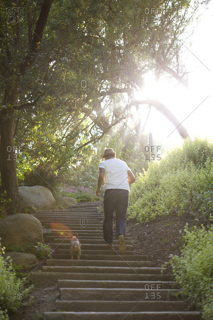 Man walking up the stairs with dog