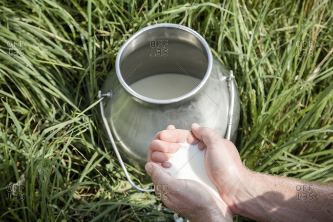Man cups fresh milk at a dairy farm