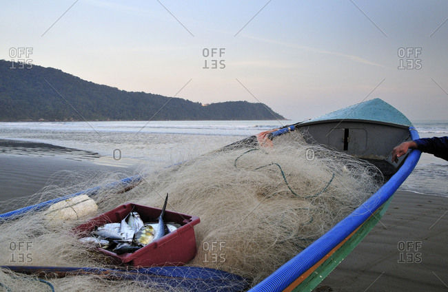 Fishing net and fresh fish in a boat