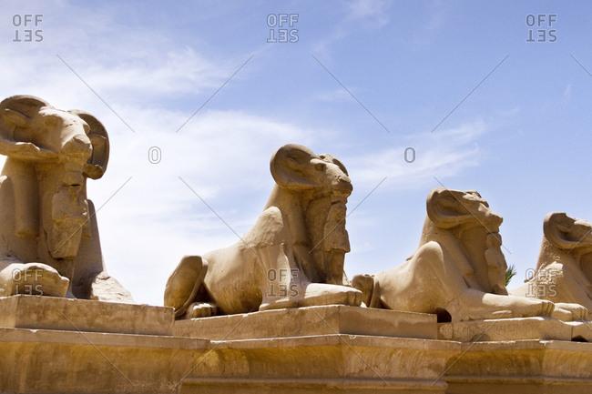 Ram-headed sphinxes at Karnak