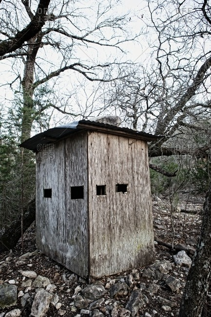 Hunting blind in a forest