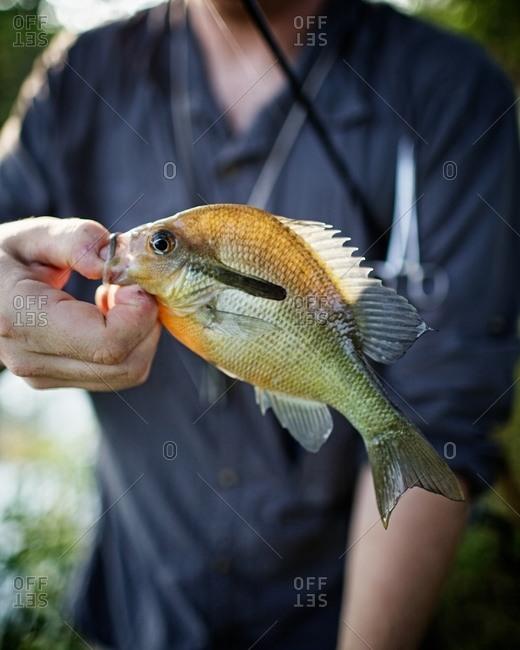 Man holding a captured fish